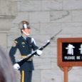 衛兵の交代式2